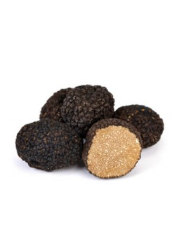 Fresh black summer truffles A-grade