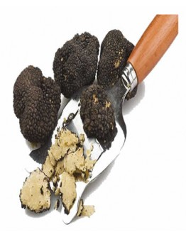 Fresh Black Summer Truffles C-grade