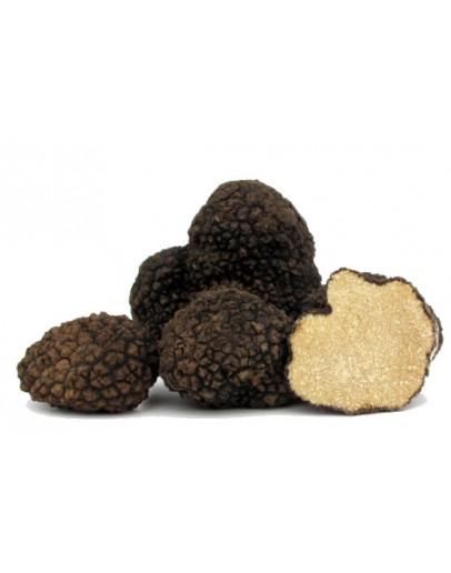 Fresh Black Summer Truffles Extra grade Fresh Truffles, Types of truffles, Fresh Tuber Aestivum image
