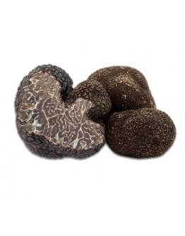Fresh black winter truffles Brumale B-grade