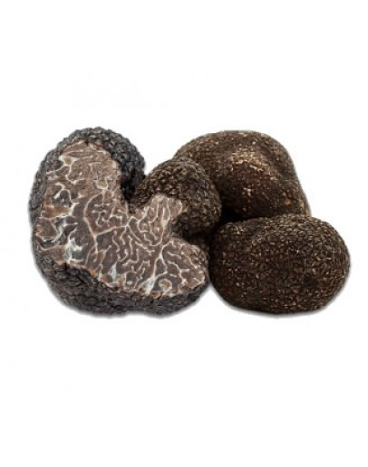 Fresh black winter truffles Brumale B-grade