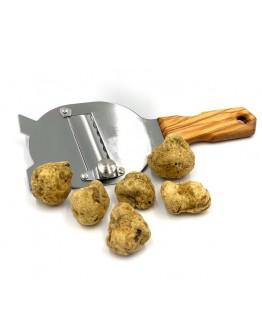 Fresh white truffles Tuber Magnatum pico B-grade