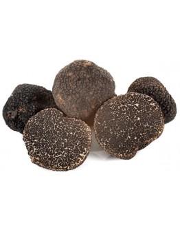 Fresh Black Truffles Melanosporum A-grade