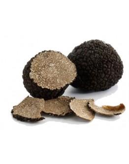 Fresh black Burgundy truffles Uncinatum B-grade