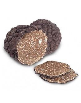 Fresh black Burgundy truffles Uncinatum Extra grade